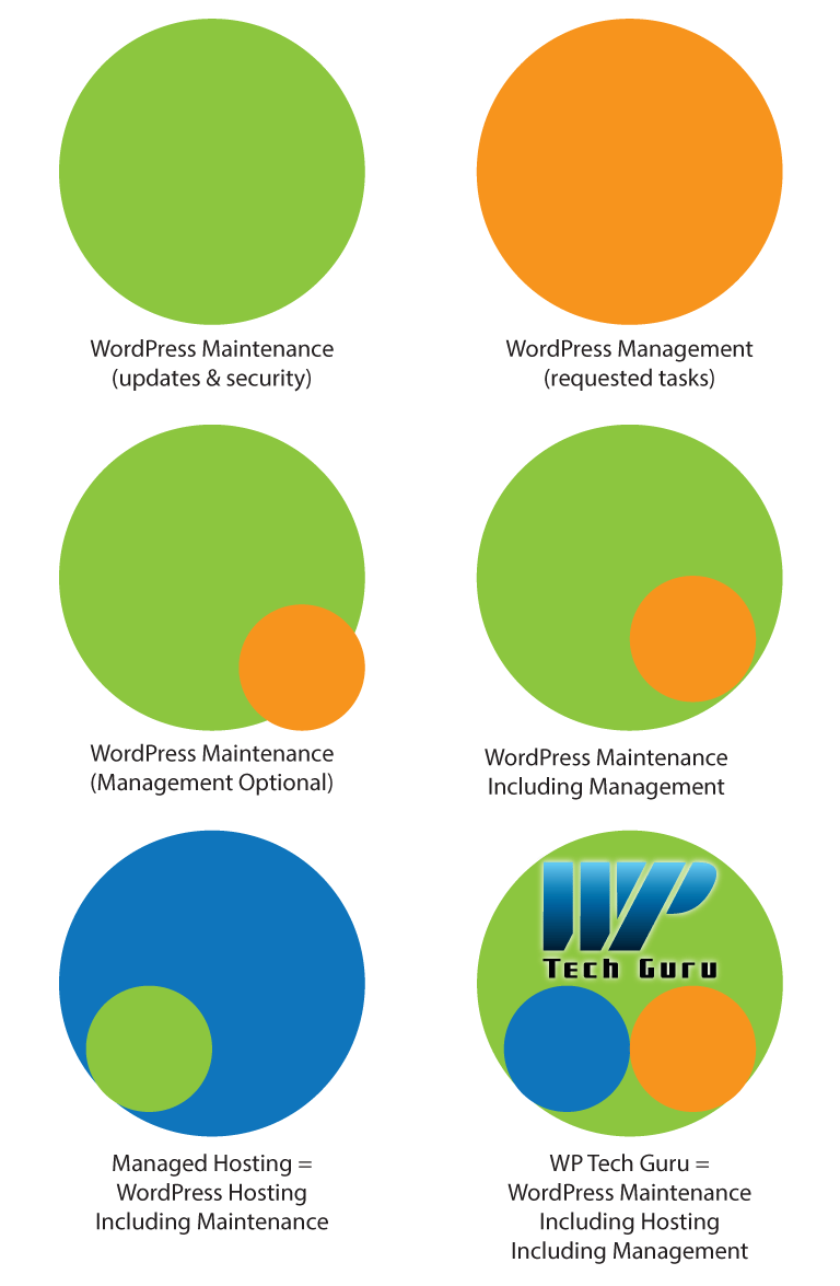 WordPress Management and Maintenance Graphic